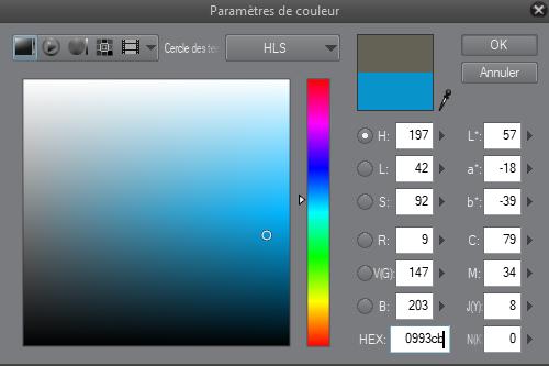 entrez le code hexadécimal de la couleur