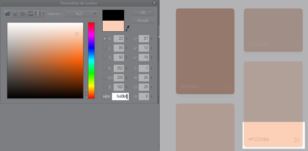 paramètres de couleur